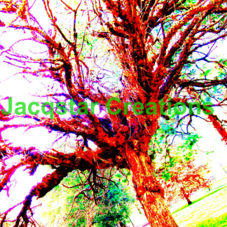 Funky Tree in a Melbourne park digitally enhanced